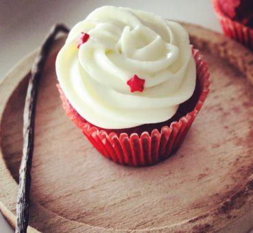 Je lance ma Cupcake Factory !